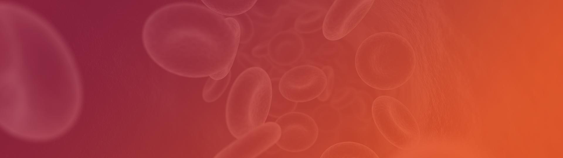 Header hemoglobinopatias