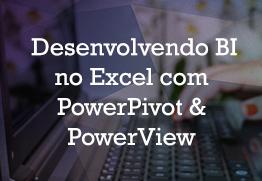 Desenvolvendo bi excel powerpivot powerview