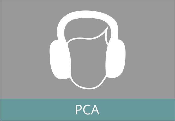 %c3%adcones cursos pca2