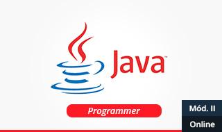 1433536740 java programmer modulo 2 online