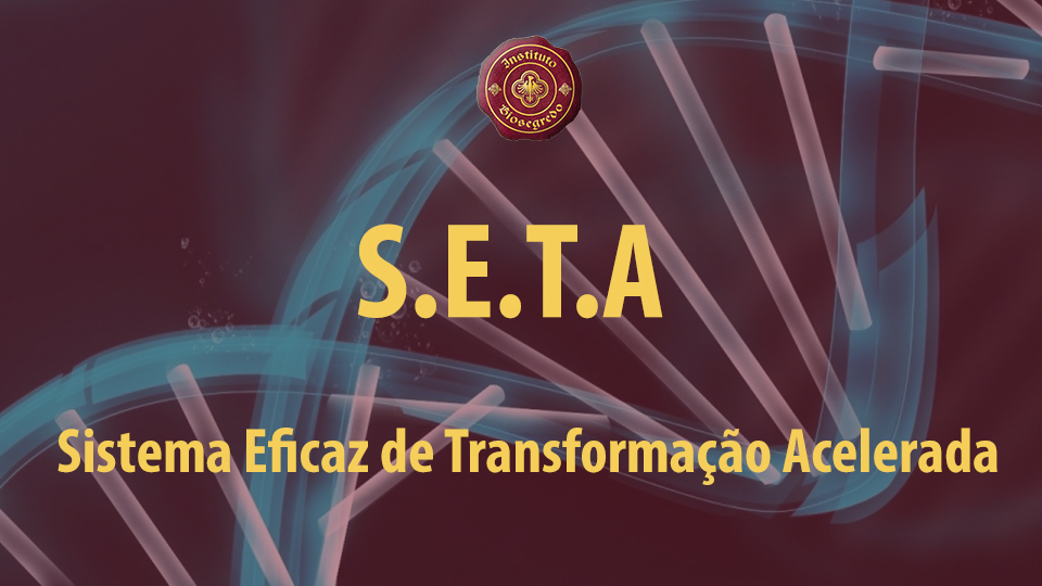 Seta%20960x540