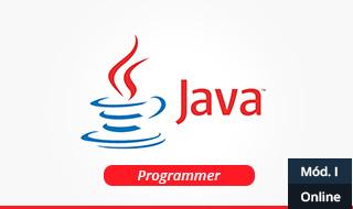 1433534397 java programmer modulo 1 online