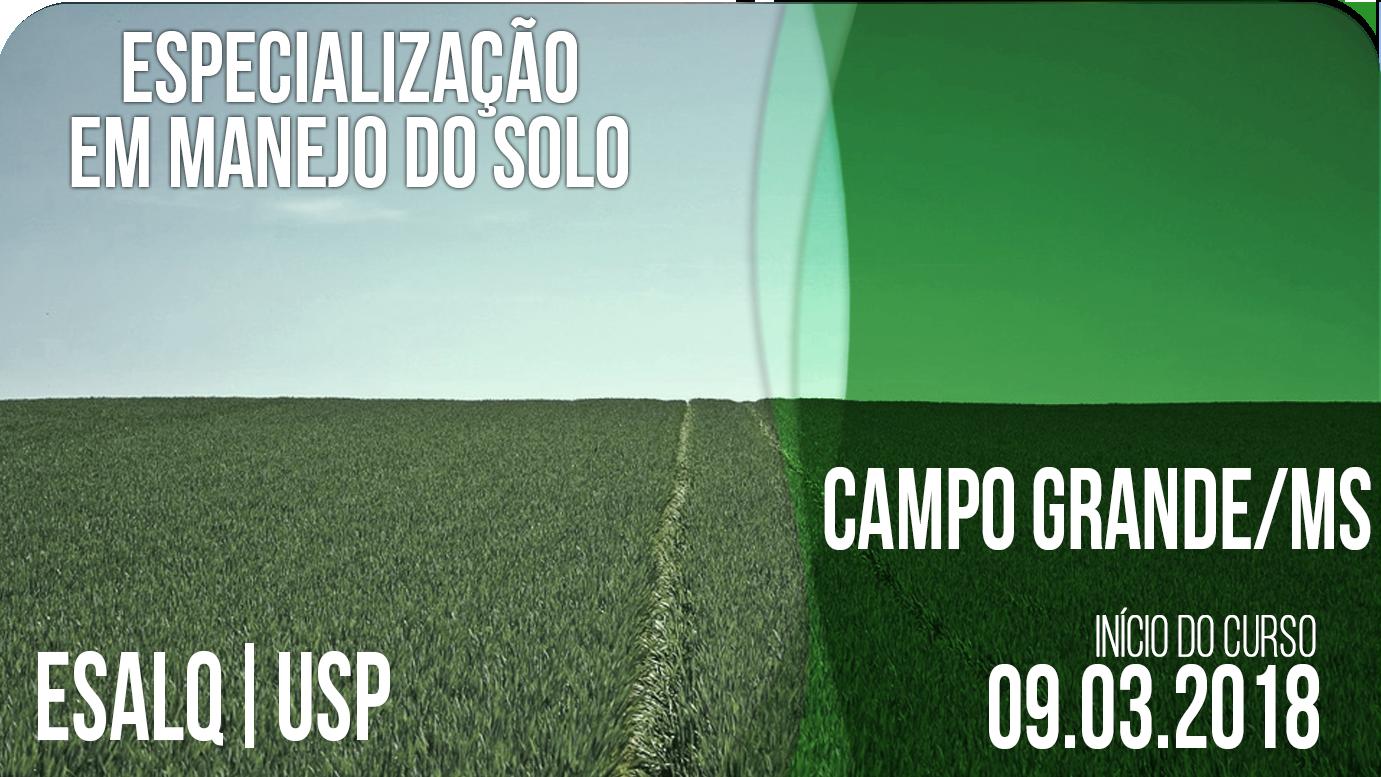 Campo%20grande%202018