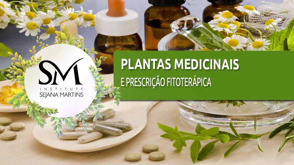 Plantas%20medicinais%20e%20prescri%c3%a7%c3%a3o%20fito