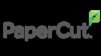 Big logo papercut