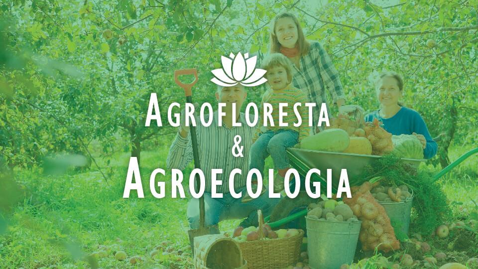 Agroecologia%20e%20agrofloresta