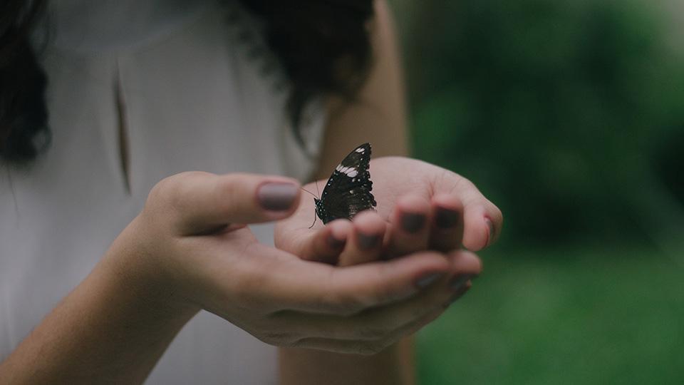 Encuentro con el alma thumb
