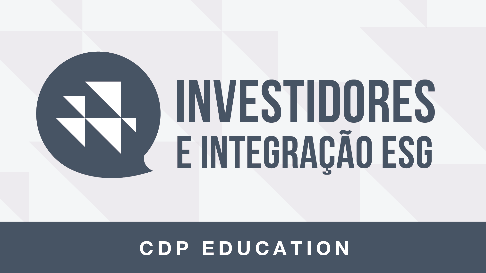 Logo investidores%2bpt