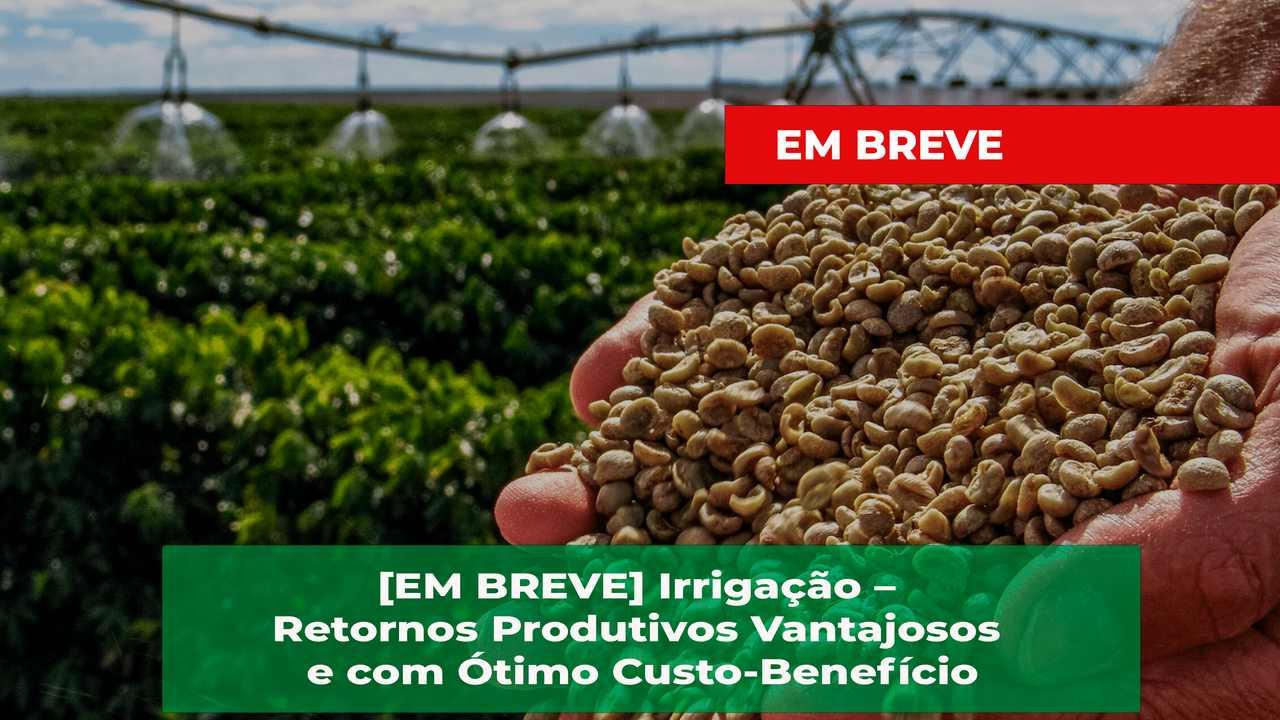 Irriga%c3%a7%c3%a3o easy resize.com%2b 1