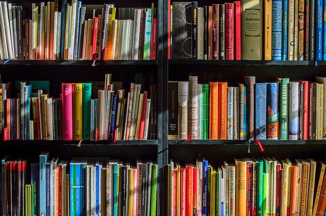 Books 1204029 640