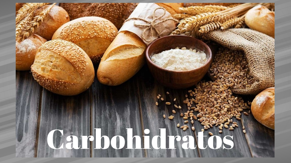 Carbohidratos%2bcurso