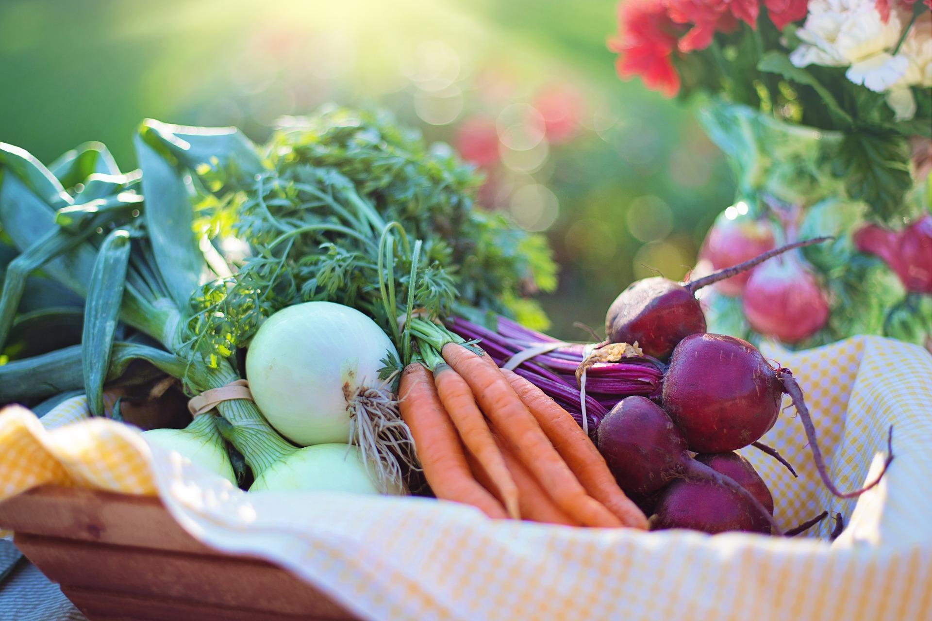 Vegetables 2485055 1920